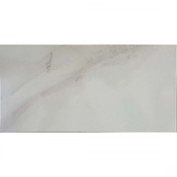 Brillo Carrara 25x50cm White Gloss
